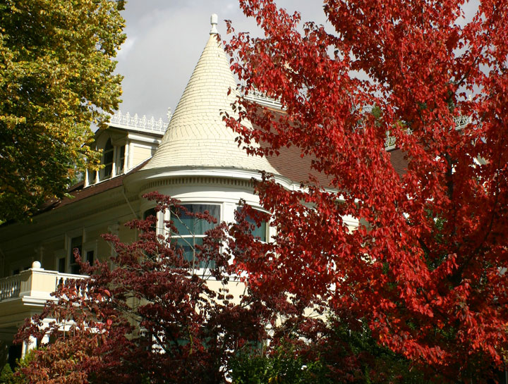 fall colors walking tour