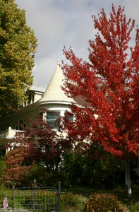 Victorian Fall 10-07.180