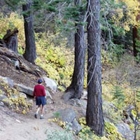Nevada City Hiking