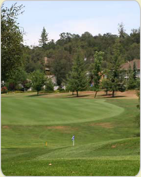 Golf Golf Courses Nevada City California