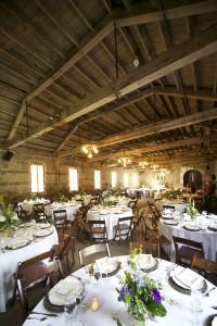 Wedding-TurningLeaf