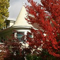 Victorian California Fall Colors Tour