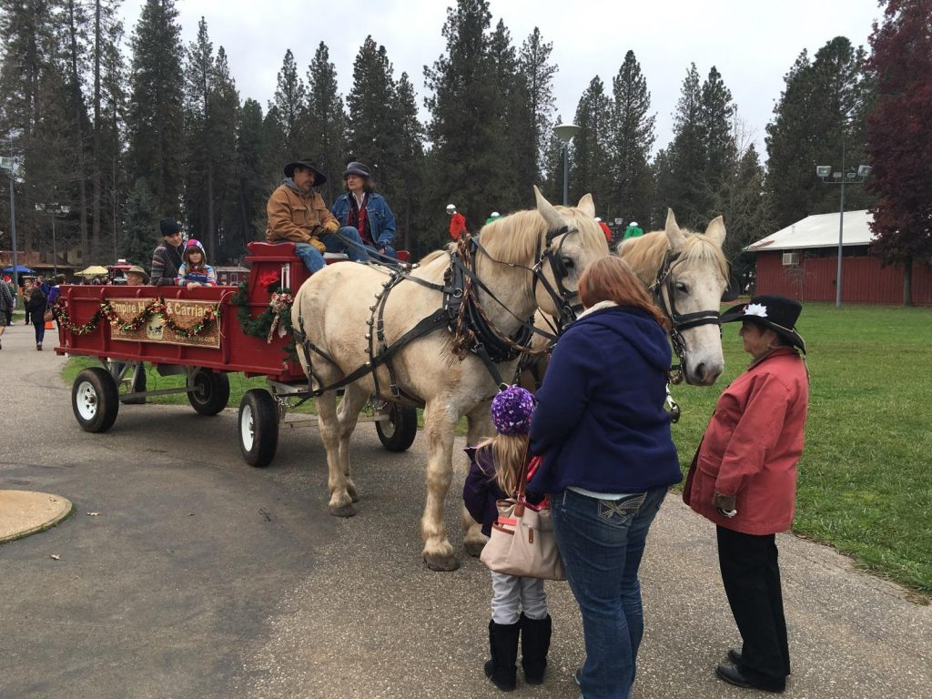 The Nevada County Fairgrounds Is Located At 11228 McCourtney Road In Grass Valley For More Information Visit NevadaCountyFair Or Call 530 273 6217
