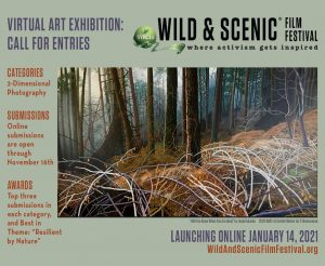 Wild Scenic Film Festival Now Accepting Art Submissions For 2021 Exhibition Nevada City California