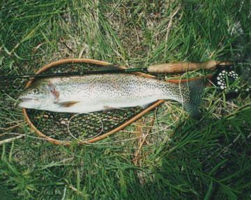 fishing in the sierras