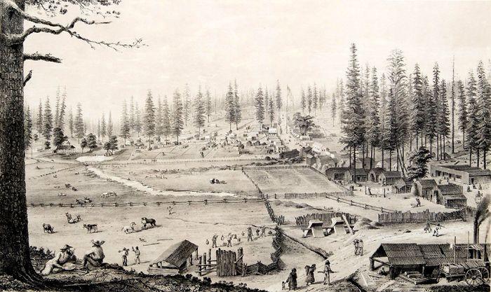 grass valley gold rush